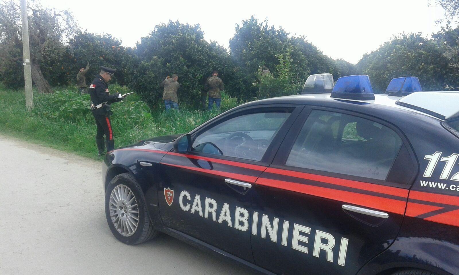 Lentini, i carabinieri denunciano due imprenditori agricoli per l'intermediazione illecita e lo sfruttamento dei quattro lavoratori