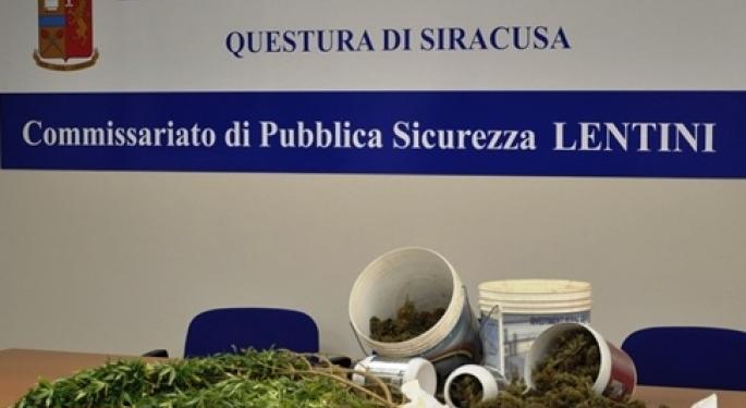 Lentini, la Polizia arresta un uomo. Piante e foglie essiccate di marijuana