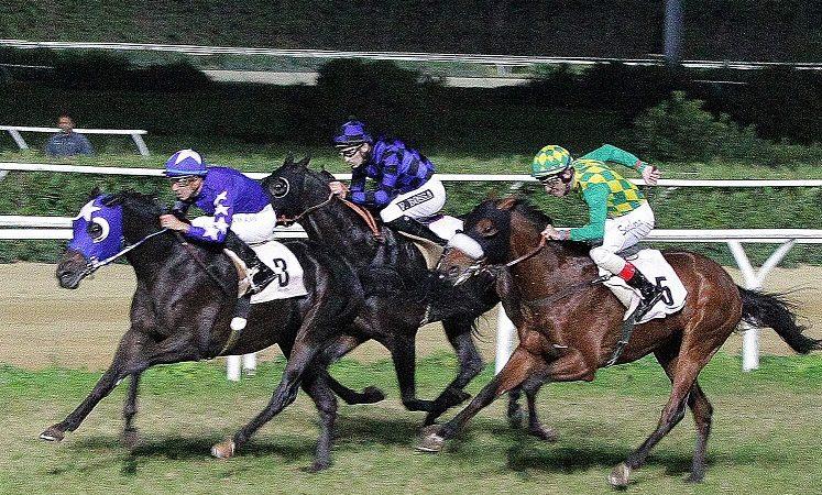 Siracusa Galoppo. Ritornano in pista le corse dei cavalli, venerdì 23 agosto