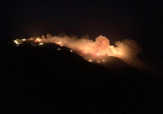 Palermo,  Incendi in Sicilia. Interpellanza PD all'Ars: Musumeci accusa i forestali ma tace sulle inadempienze della Regione