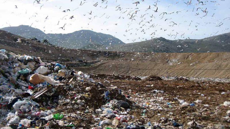 Palermo, Emergenza rifiuti. M5S: Rimpallo di responsabilità vergognoso