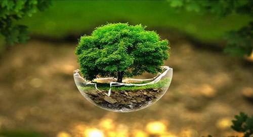 Giornata della saggia Ecologia  si celebra domani. I giovani speranza per la Sicilia