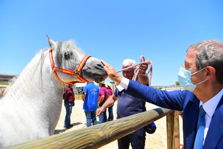 """Sport equestri, ad Ambelia aperta la """"Fiera mediterraneo del cavallo"""""""