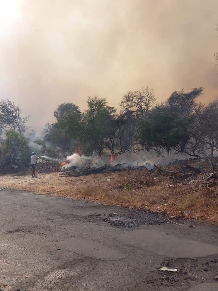 Agnone Bagni, un vasto incendio ha distrutto il boschetto di Costa Gaia e Baia del Sole. Paura per i villeggianti.