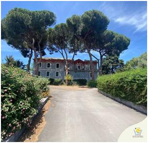 """Istituto """"John Dewey"""", a Catania una scuola tra gli alberi,sabato scorso open day"""